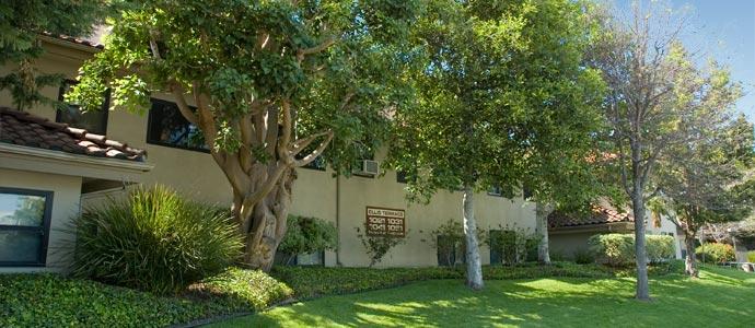 Ellis Terrace Apartments Picture 2