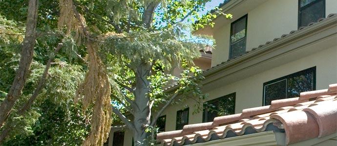 Ellis Terrace Apartments Picture 5