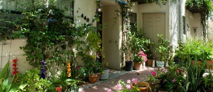 Fiore Gardens Apartments Picture 1