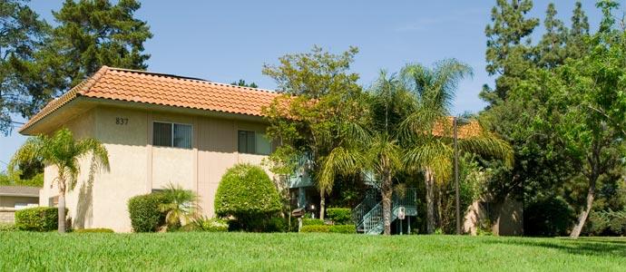 Los Arboles Apartments Picture 1
