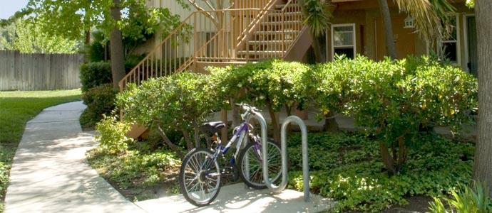 Los Arboles Apartments Picture 3