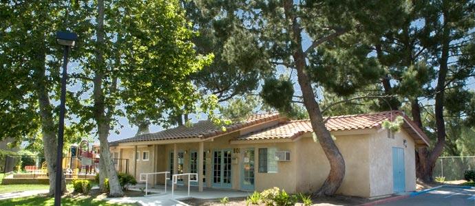 Los Arboles Apartments Picture 5